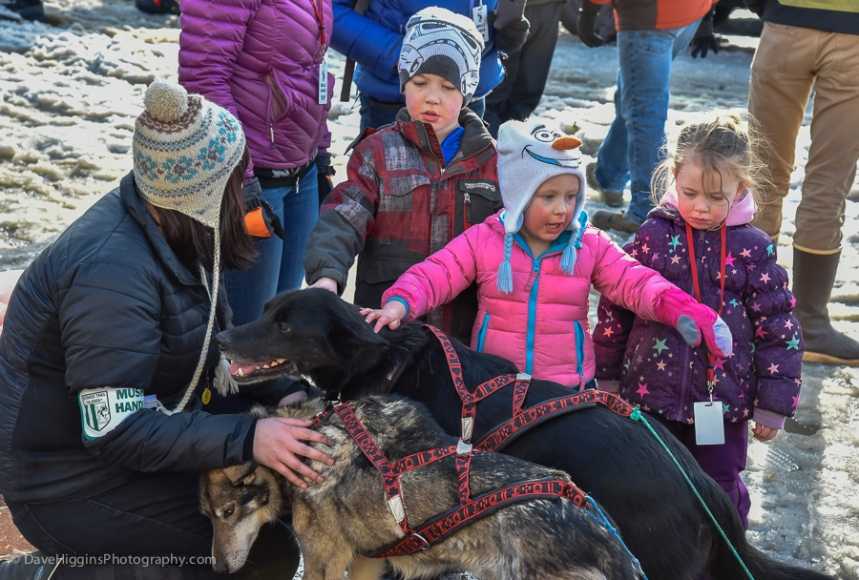 Future Mushers?