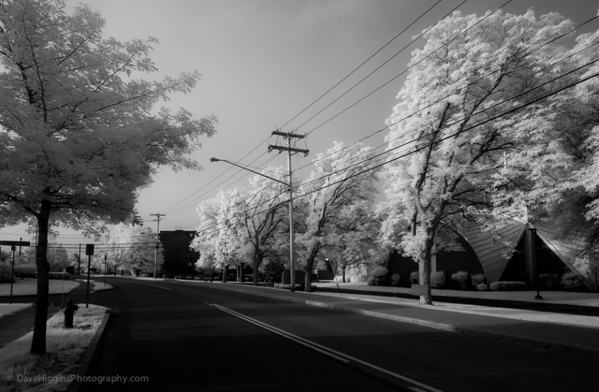 Electrophobic Trees