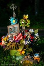 Flowers For Jonboy - New York