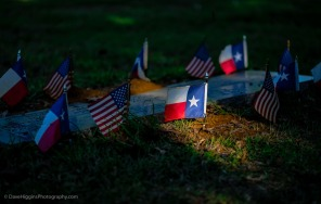 Flags - Texas