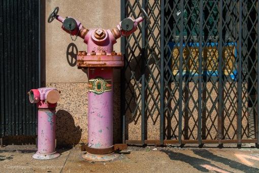 Dutch Masters Hydrant