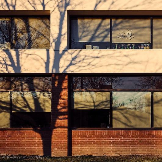 Window Tchotchkes